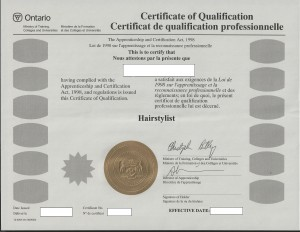 St.Louis-hairstyling-Graduation